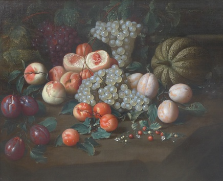 Johan Rosenhagen, Study of exotic fruits