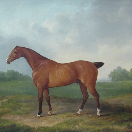 James Barenger - Race Horse (I of II)
